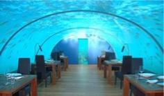 restaurante oceanografic Ciudad de las Artes y las Ciencias de Valencia 2