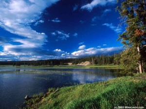 http://www.e-global.es/viaje-turismo-online/wp-includes/graficos/yellowstone-5.jpg